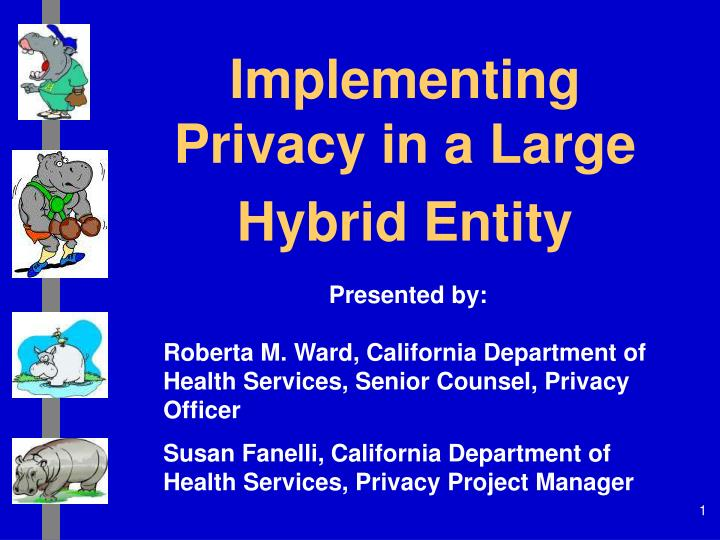 Implementing privacy in a large hybrid entity