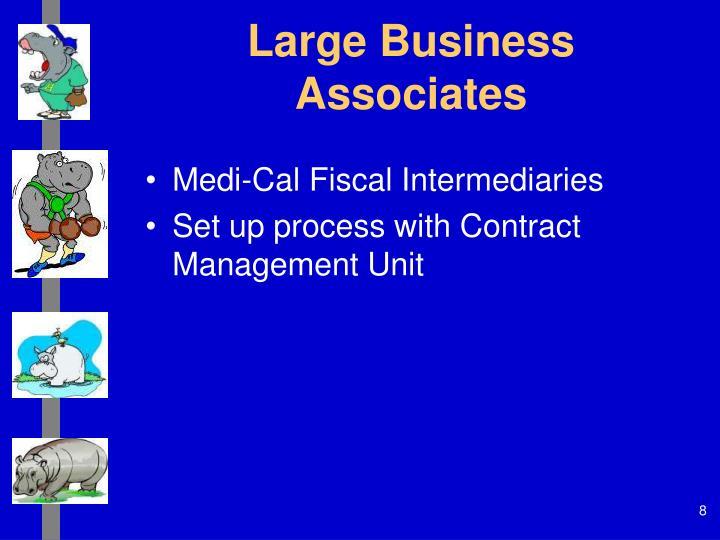 Large Business Associates