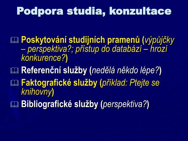 Podpora studia, konzultace