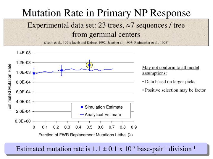 the mutation rate essay 1 molecular genetics ii (cont) mutation 1 all genetic variation arises from change in the nucleotide sequences of dna alleles of a gene commonly differ by only a.