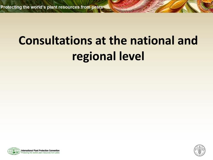 Consultations at the national and regional level