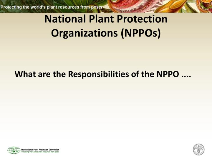 National plant protection organizations nppos