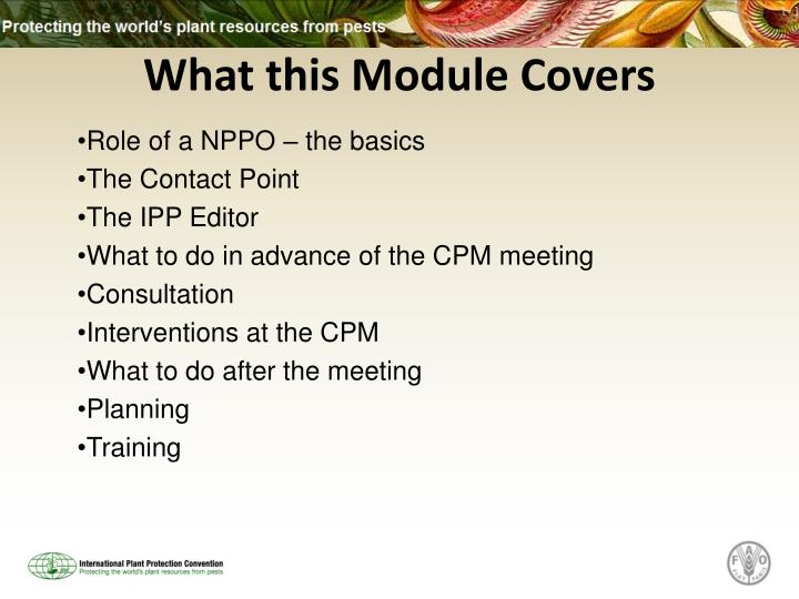 What this module covers