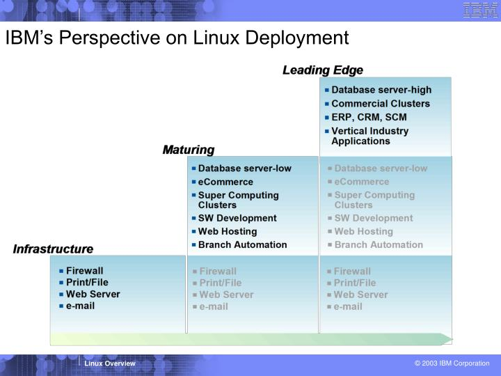IBM's Perspective on Linux Deployment