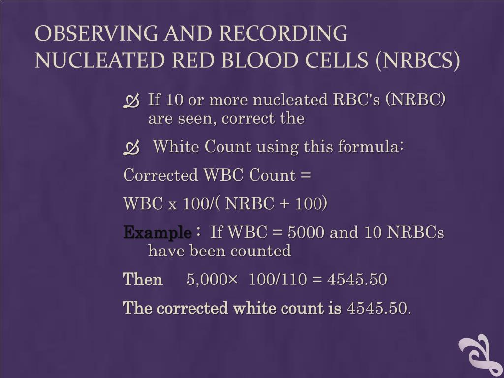 PPT - Blood smear examination PowerPoint Presentation - ID:4460368