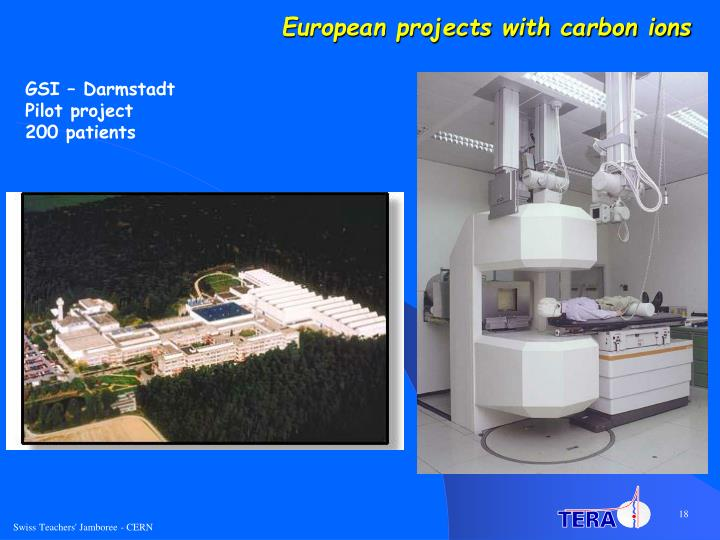 European projects with carbon ions