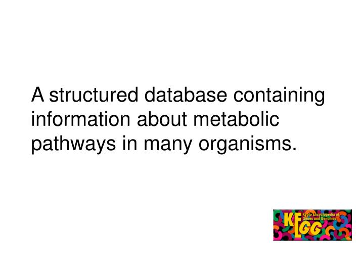 A structured database containing information about metabolic pathways in many organisms.