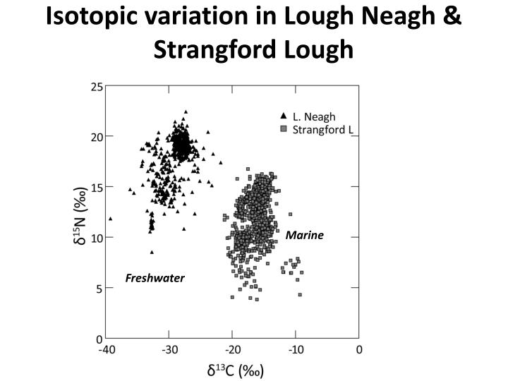 Isotopic variation in Lough Neagh & Strangford Lough