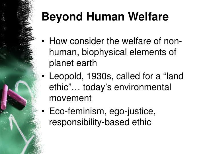 Beyond Human Welfare