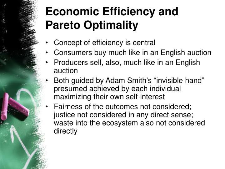 Economic Efficiency and Pareto Optimality