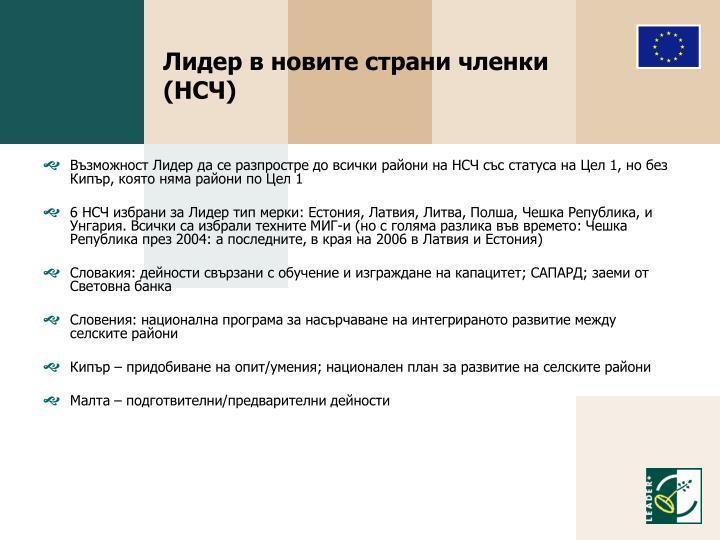 Лидер в новите страни членки (НСЧ)