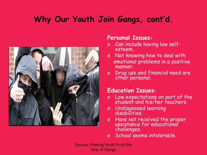 why do youth join gangs