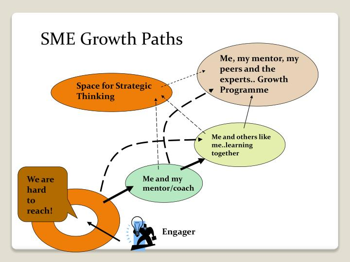SME Growth Paths