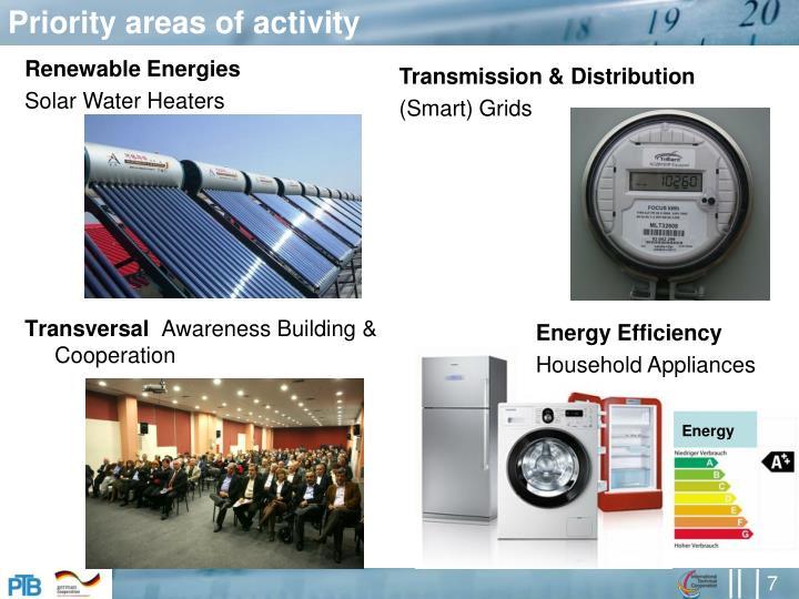 Priority areas of activity