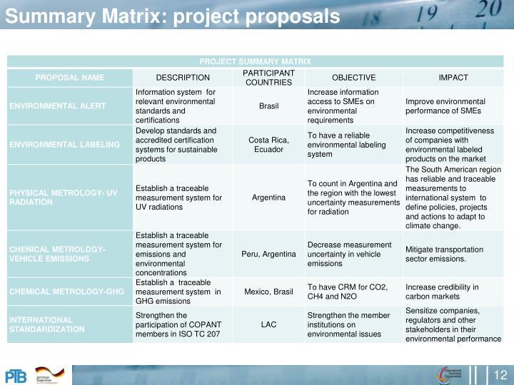 Summary Matrix: project proposals