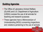 guiding agencies