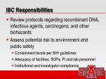 ibc responsibilities