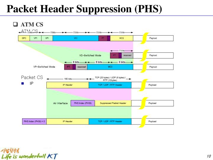 Packet Header Suppression (PHS)