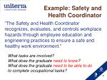 example safety and health coordinator