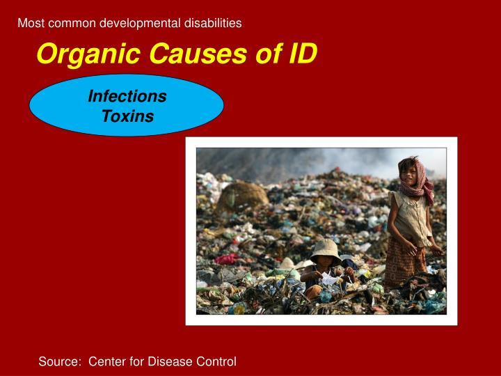 Most common developmental disabilities