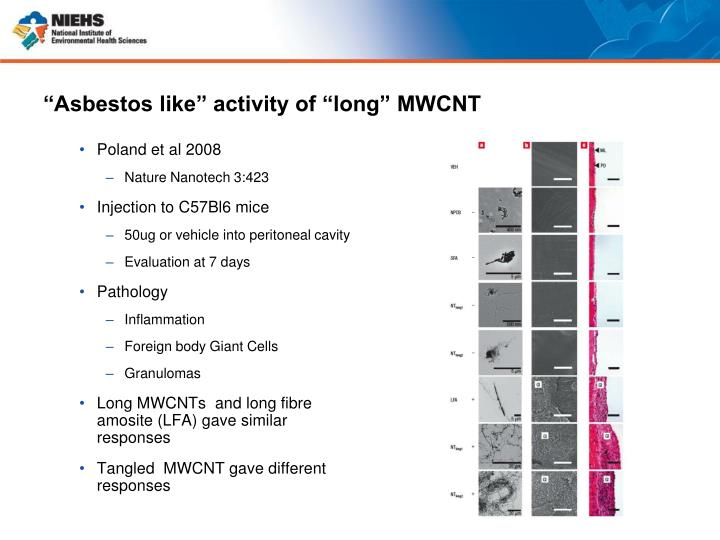 """""""Asbestos like"""" activity of """"long"""" MWCNT"""