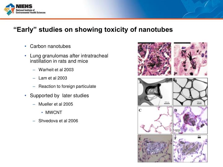 """""""Early"""" studies on showing toxicity of nanotubes"""