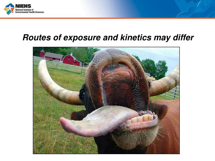 Routes of exposure and kinetics may differ