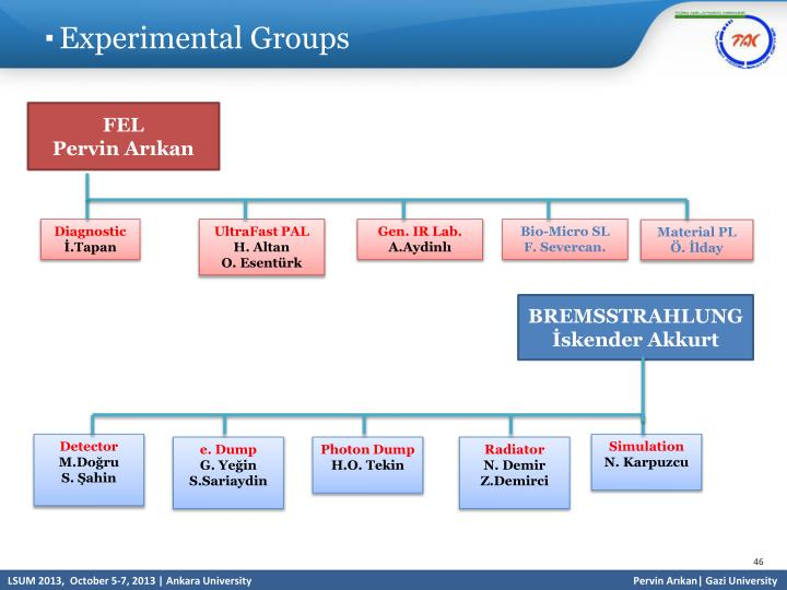 Experimental Groups