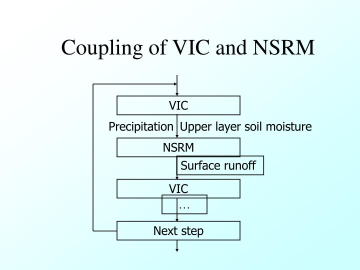 Coupling of VIC and NSRM