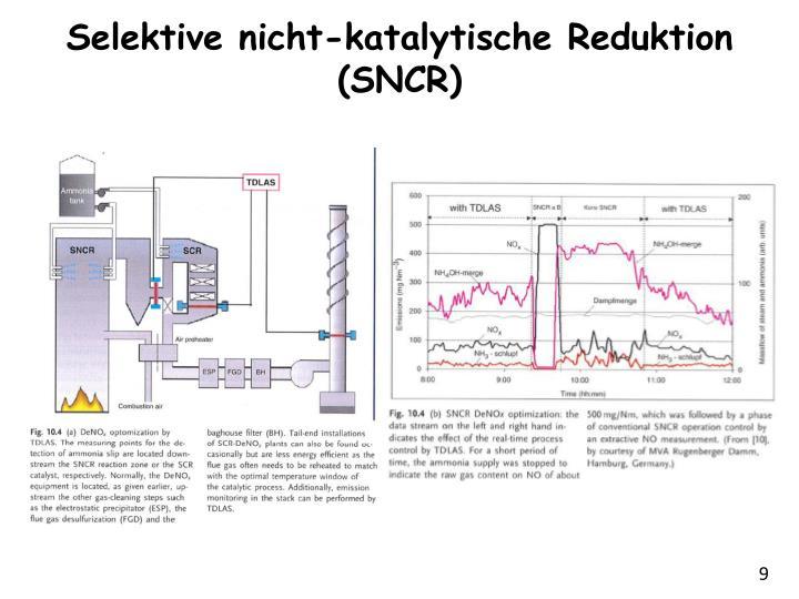 Selektive nicht-katalytische Reduktion (SNCR)