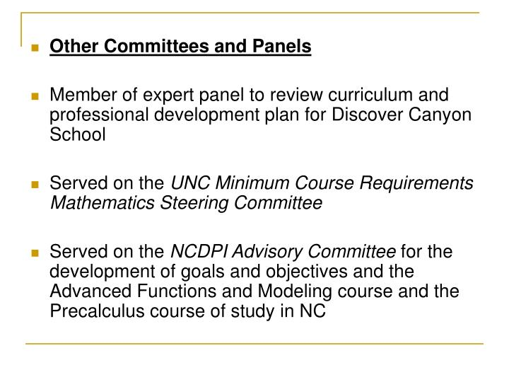 Other Committees and Panels