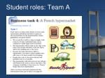 student roles team a