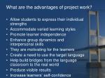 what are the advantages of project work
