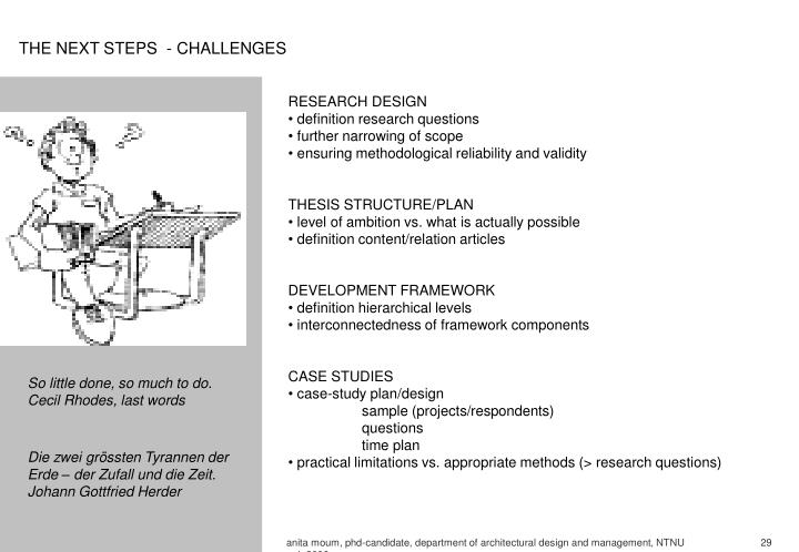 THE NEXT STEPS  - CHALLENGES