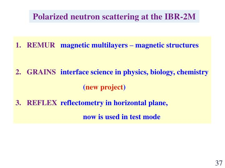 Polarized neutron scattering at the IBR-2M