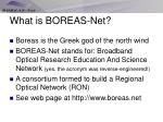 what is boreas net