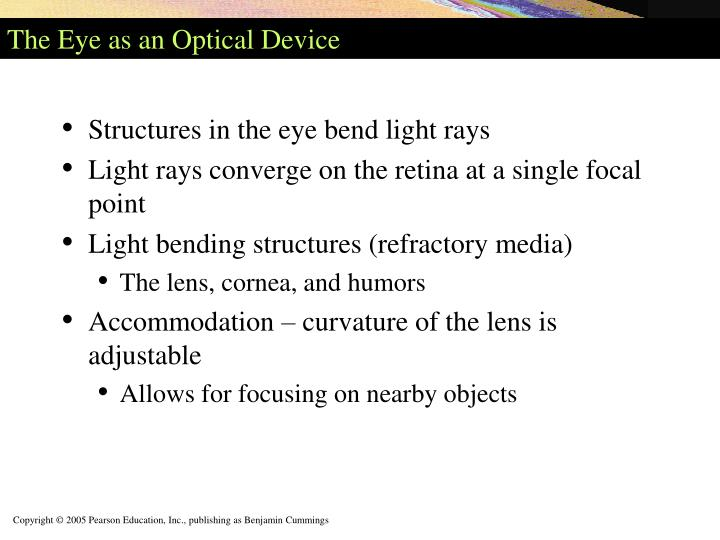 The Eye as an Optical Device