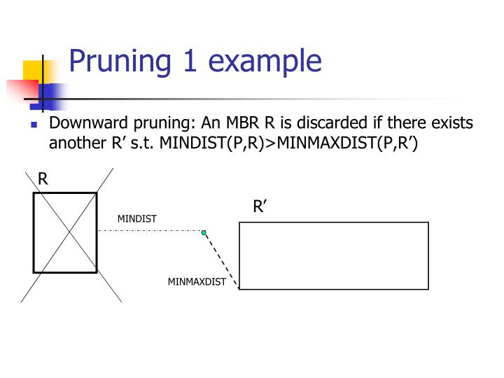 Pruning 1 example