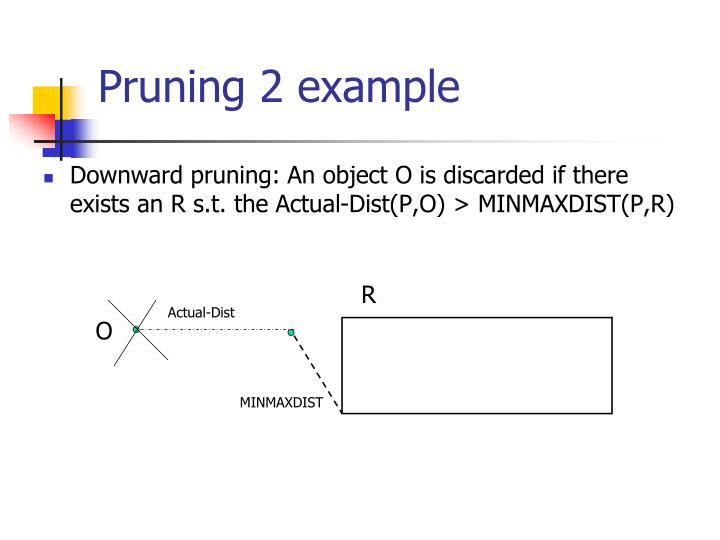 Pruning 2 example