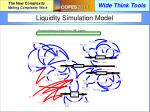 liquidity simulation model