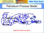 petroleum process model