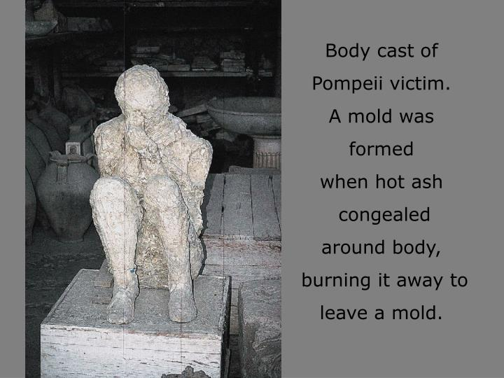 Body cast of