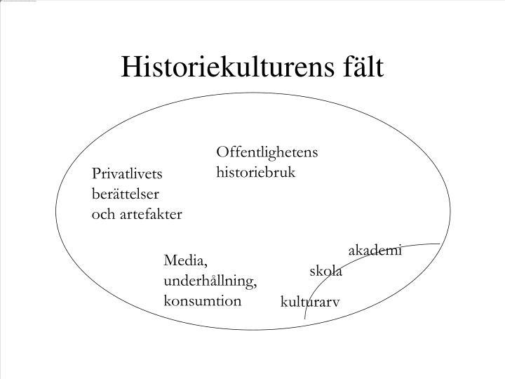 Offentlighetens historiebruk