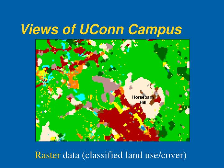 Views of UConn Campus