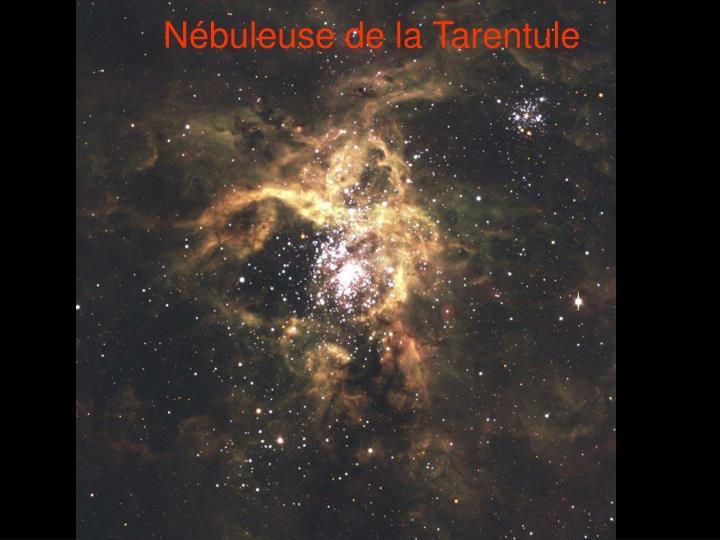Nébuleuse de la Tarentule
