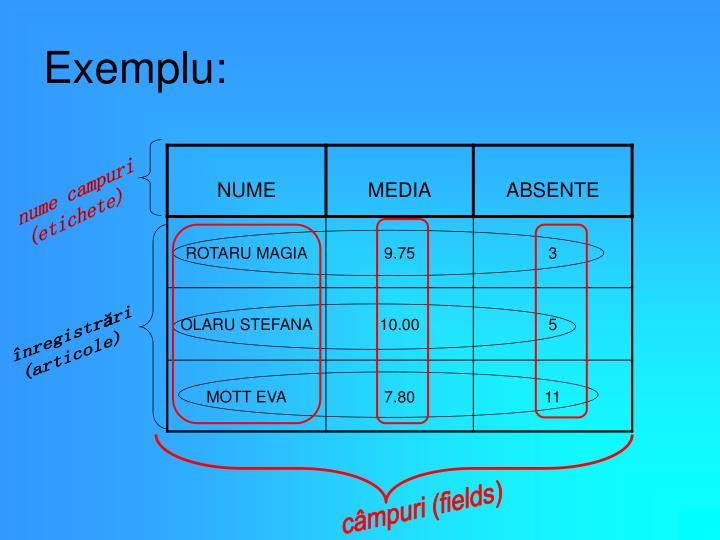 Exemplu: