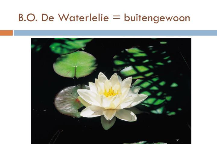 B.O. De Waterlelie = buitengewoon