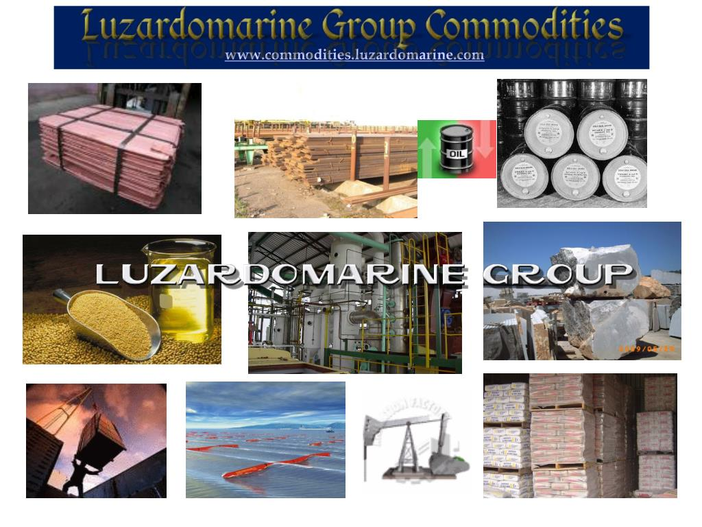 PPT - CAPT  A  LUZARDO – CEO LM GROUP -2013 PowerPoint