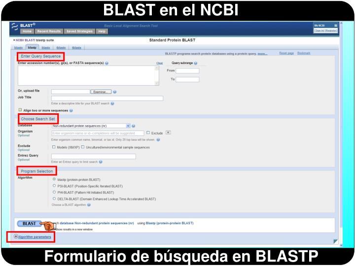 Formulario de búsqueda en BLASTP