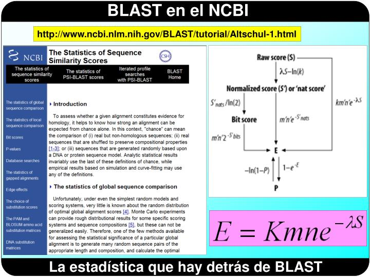 http://www.ncbi.nlm.nih.gov/BLAST/tutorial/Altschul-1.html